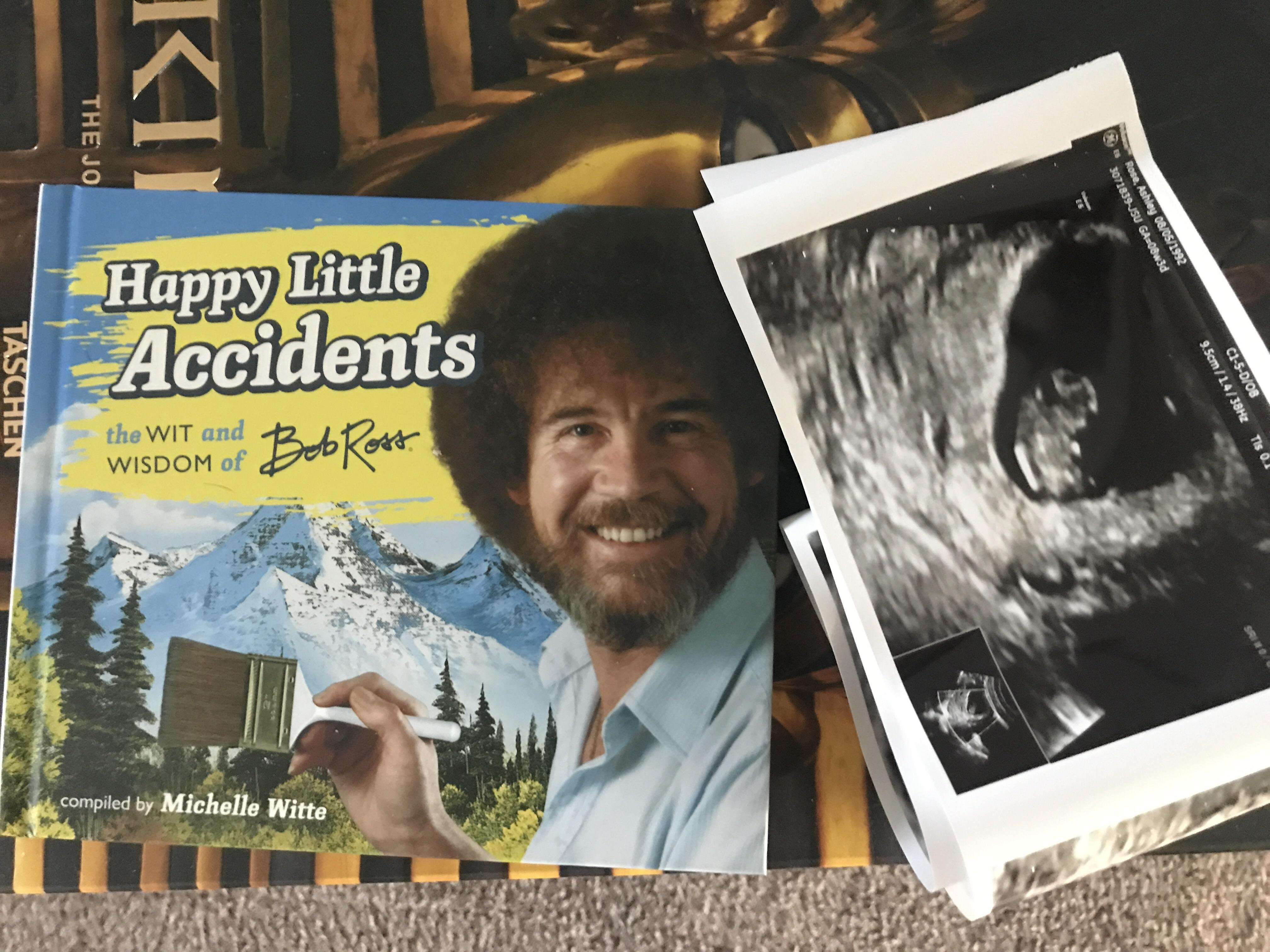 Put me like my wife gave me this bob ross book today inside was memes my wife gave me this bob ross book today inside was this picture voltagebd Gallery