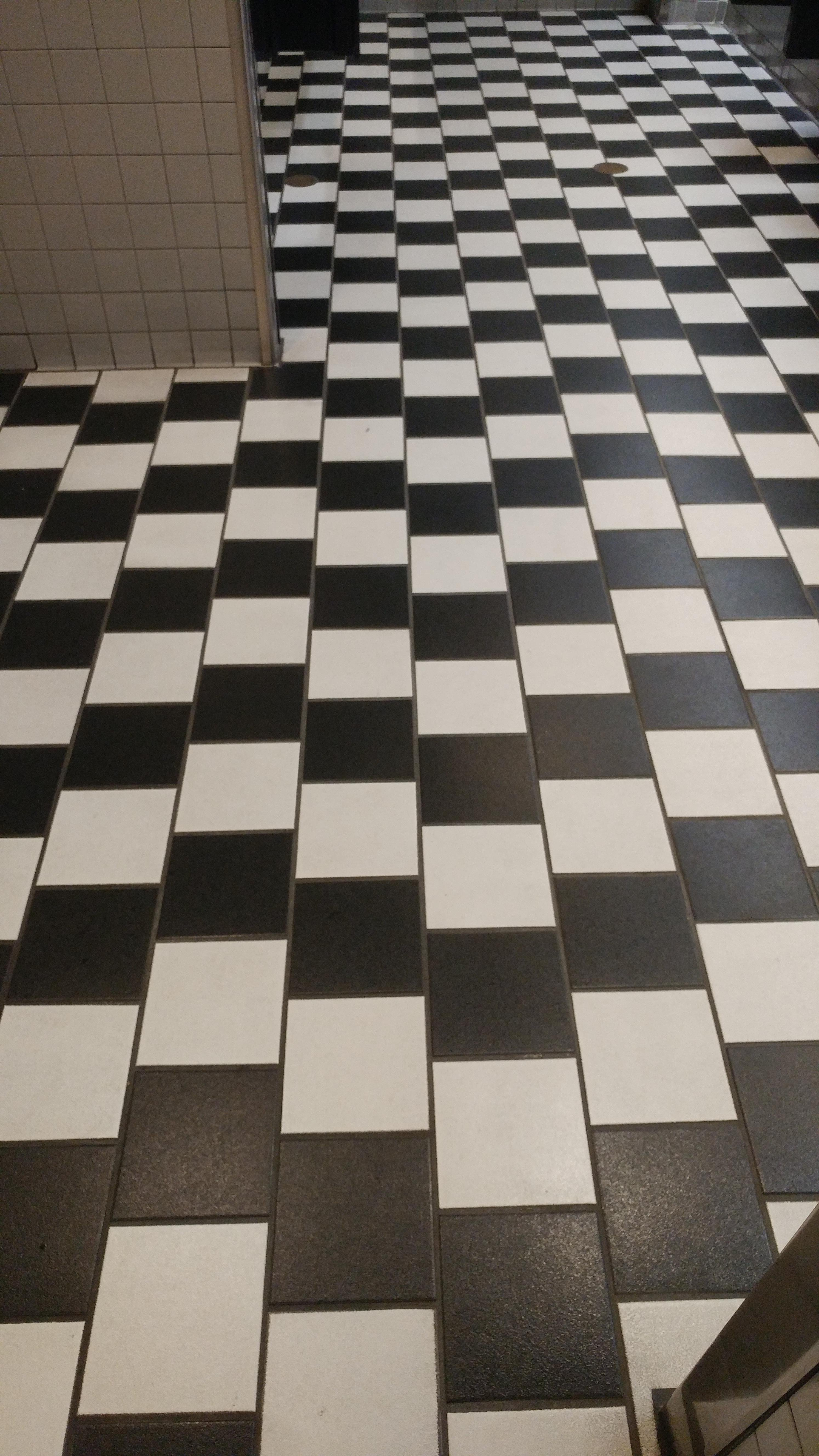 Put me like the tiles in this bathroom floor are arranged as an memes the tiles in this bathroom floor are arranged as an optical illusion funny pictures ppazfo